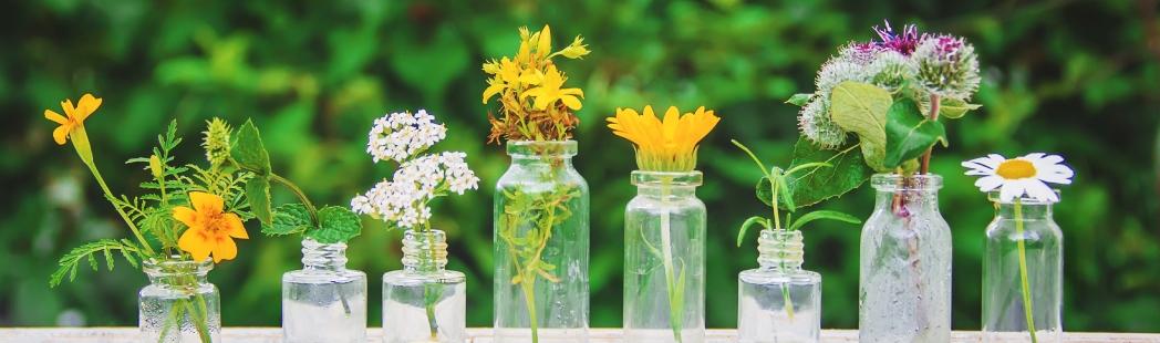 Aceites esenciales para cosmética
