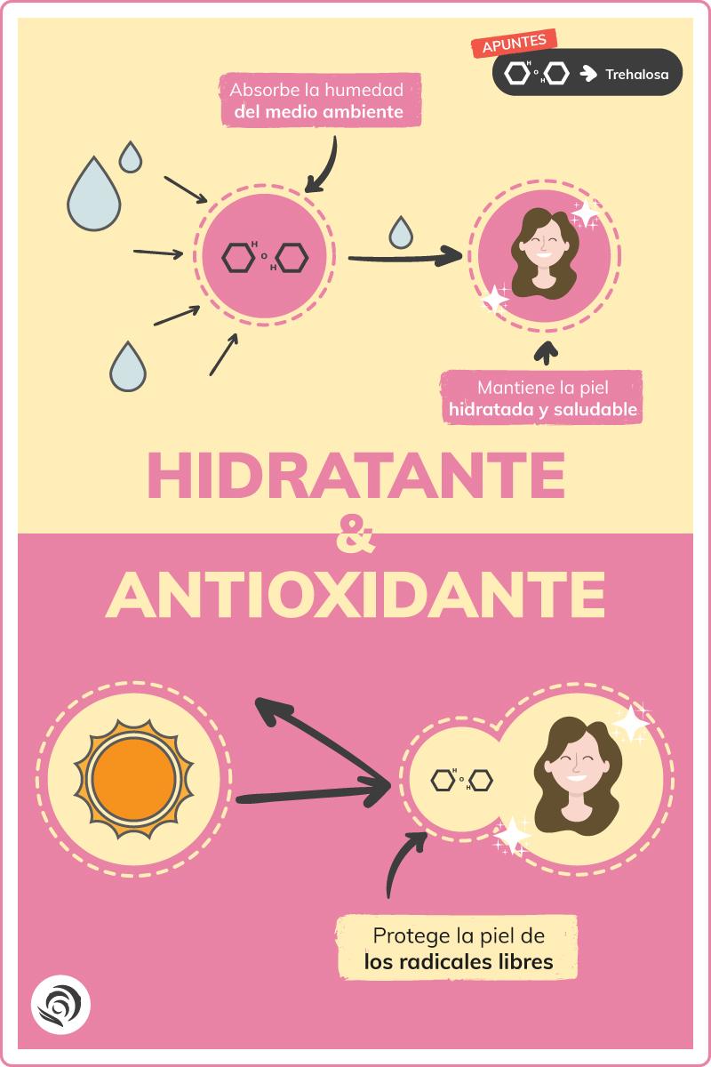 propiedades hidratantes y antioxidantes de la trehalosa